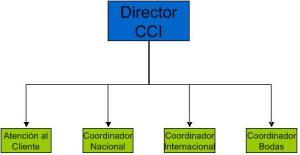 Departamento CCI
